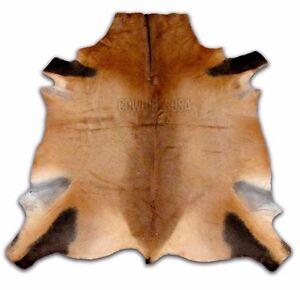 African Red Hartebeest Skin Deer Skin Buck Skin African