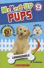 Scholastic Reader Level 2: Mixed Up Pups by Ed Masessa (Paperback / softback, 2013)