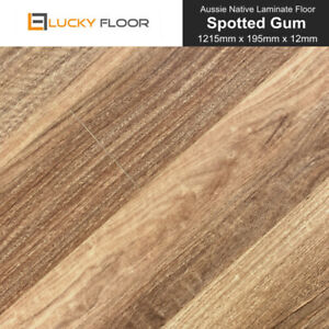 12mm Spotted Gum Laminate Flooring Floating Timber Floor Boards Floors Click Diy Ebay