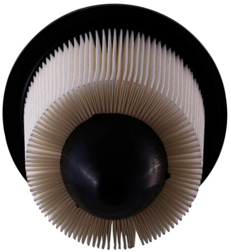 Air Filter-Standard Pronto PA4879