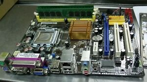 ASUS P5QPL-AM DRIVER FOR PC