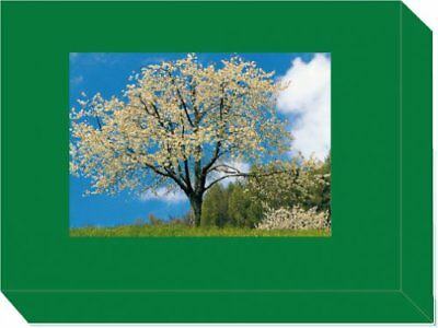 Grußkarten Box Irische Segenswünsche 10 verschiedene Klappkarten mit Umschlägen