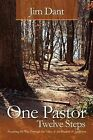 One Pastor, Twelve Steps: Preaching My Way Through the Valley of the Shadow of Addiction by Jim Dant (Paperback / softback, 2012)