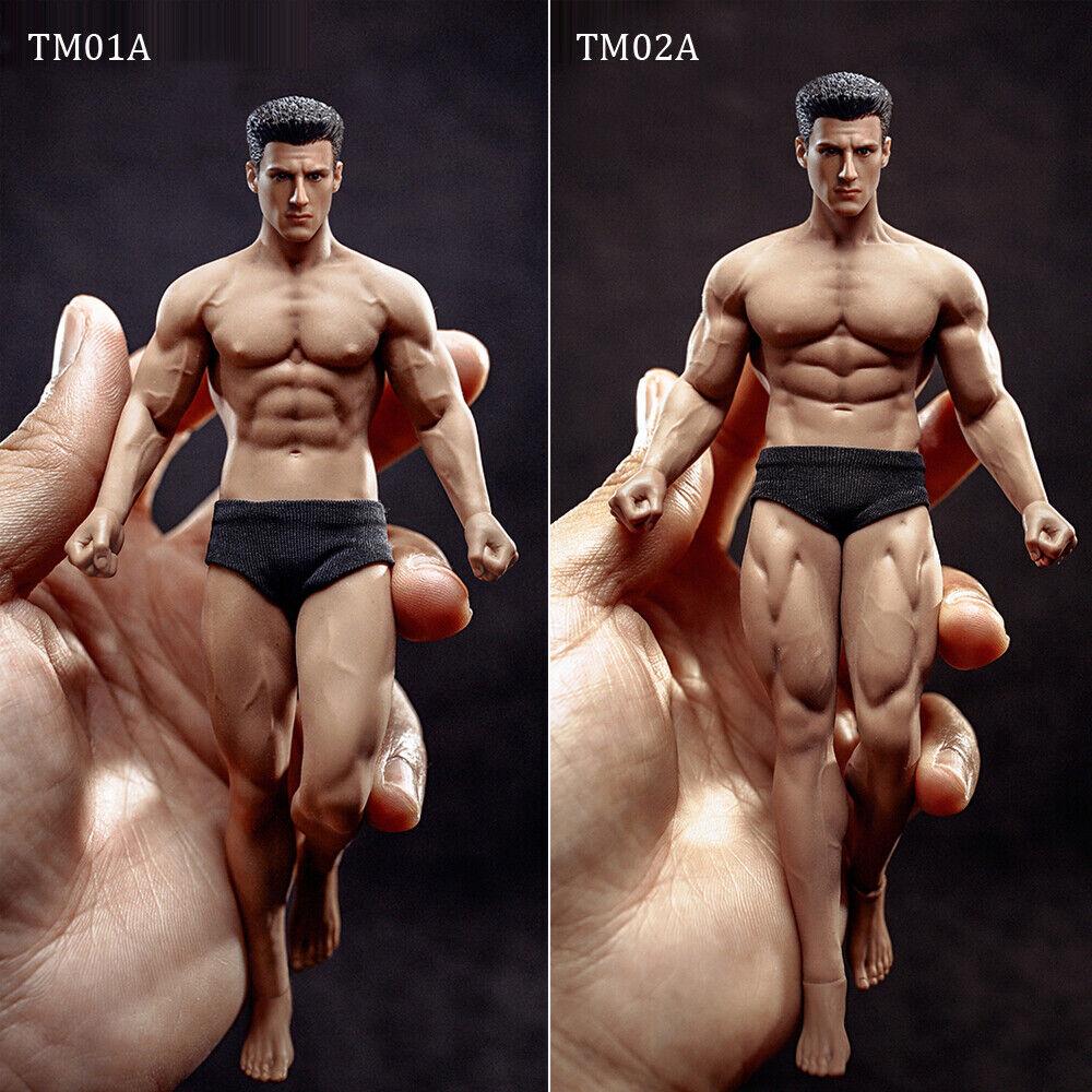 alta calidad Tbleague PHICEN Cuerpo Transparente Macho Macho Macho 1 12 TM01A TM02A 6  Figura modelo de cuerpo  artículos de promoción