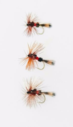 Royal Wulff Mosche Trota Dry 3 Pack ATTRACTOR effimera pesca a mosca TG 10,12,14