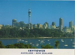 LARGE-AUCKLAND-SKYTOWER-NEW-ZEALAND-POSTCARD-THE-SKY-TOWER-NZ-POSTCARD