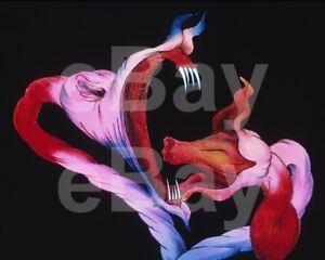 Pink-Floyd-THe-Wall-1982-Gerald-Scarfe-Artwork-10x8-Photo
