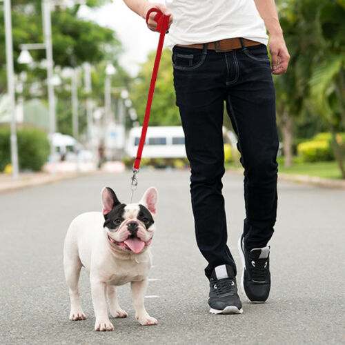LONG DOG TRAINING LEAD Leash Puppy Agility Obedience Recalls 15 to 100 Foot