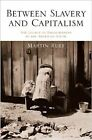 Between Slavery and Capitalism: The Legacy of Emancipation in the American South by Martin Ruef (Hardback, 2014)