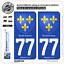 2 Stickers autocollant plaque immatriculation 77 Ile de France Armoiries