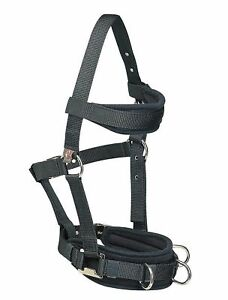 WH Equestrian Lunging Cavesson Horse Pony Equestrian Lunge Training Breaking
