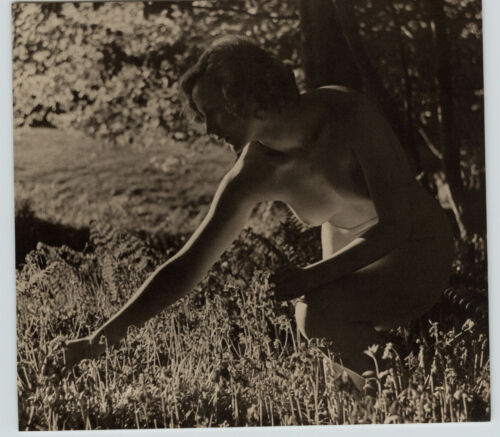 1940 Original FEMALE OUTDOOR NUDE FLOWER FIELD Woman Body JOHN EVERARD PHOTO