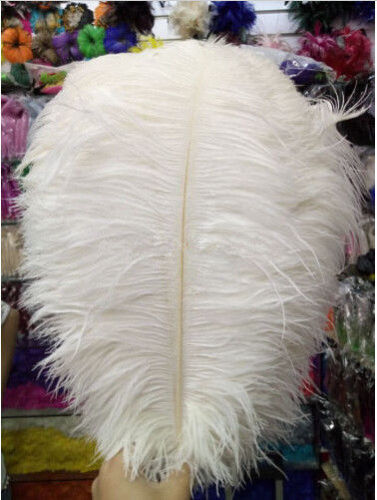 10-200 pcs high-quality natural ostrich feathers 6-24 inch//15-60cm White