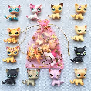 5pcs-lot-Random-LPS-Short-Hair-Cat-Littlest-Pet-Shop-rare-kitty-Surprise-gift
