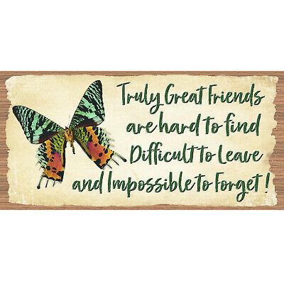 GS 3176 Friend plaque-Best Friends Sign Friend Wood Signs