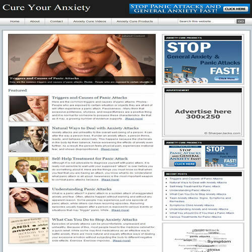 Established /'CURE YOUR ANXIETY/' Website Turnkey Business FREE HOSTING