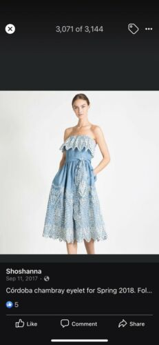 Shoshanna Cordoba Chambray Dress