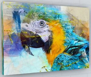 STUNNING MACAW PARROT BIRD COLOUR SPLASH CANVAS PICTURE PRINT WALL