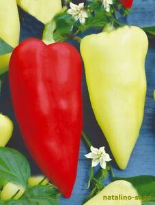Mix Paprika Süß und Scharf Chilli 10 Sorten Samen Set. Sweet /& Hot Pepper