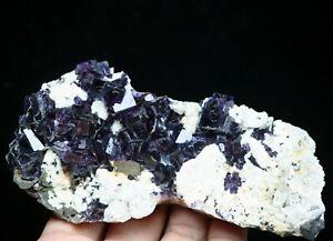 Natural-Purple-Phantom-Cube-Fluorite-amp-Arsenopyrite-Crystal-Mineral-Specimen