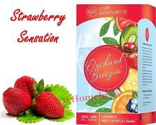 RJ Spagnols Orchard Breezin Strawberry Sensation Riesling Wine Making Kit