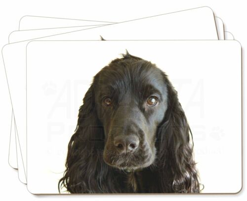 Black Cocker Spaniel Dog Picture Placemats in Gift Box, ADSC8P