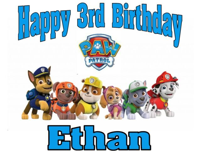 NEW PERSONALIZED PAW PATROL BIRTHDAY T SHIRT PARTY FAVOR TEE ADD NAME AND AGE