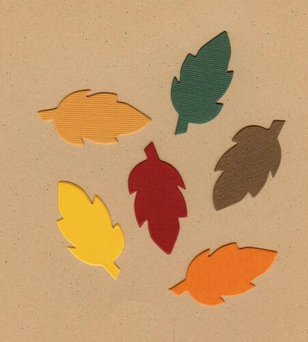 Mini Leaves #1 Die Cuts AccuCut