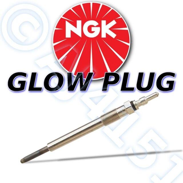 Nuevo NGK Bujía Incandescencia para Nissan Motores Sd16,Sd22,Sd33 (12v)