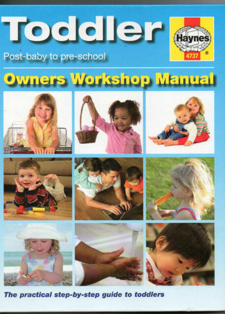 The Toddler Manual by Dr. Ian Banks (Hardback, 2008)
