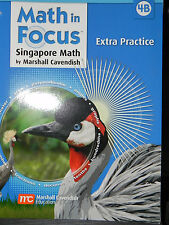 Houghton Mifflin Harcourt Math in Focus Extra Practice Grade 4 B The Singapore A