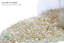 Miyuki Round Rocailles 15//0 Ivory Ceylon Pearl Luster Seed Beads RR-592