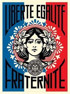 """Obey Giant / Shepard Fairey / Liberté Egalité Fraternité / Toile 40x30cm - France - Commentaires du vendeur : """"neuf / impression professionnelle sur toile / 40x30 cm / Epaisseur du chassis : 2 cm"""" - France"""