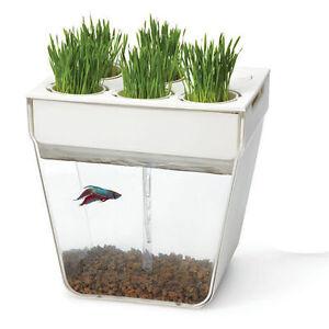 BTTR-Water-Garden-Self-Cleaning-Fish-Tank-Kitchen-Herb-Aquaponics-Organic