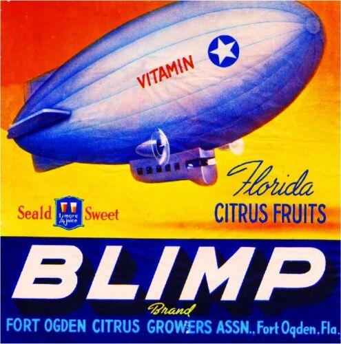 Ogden Florida Blimp Orange Citrus Fruit Crate Label Art Print Fort Ft