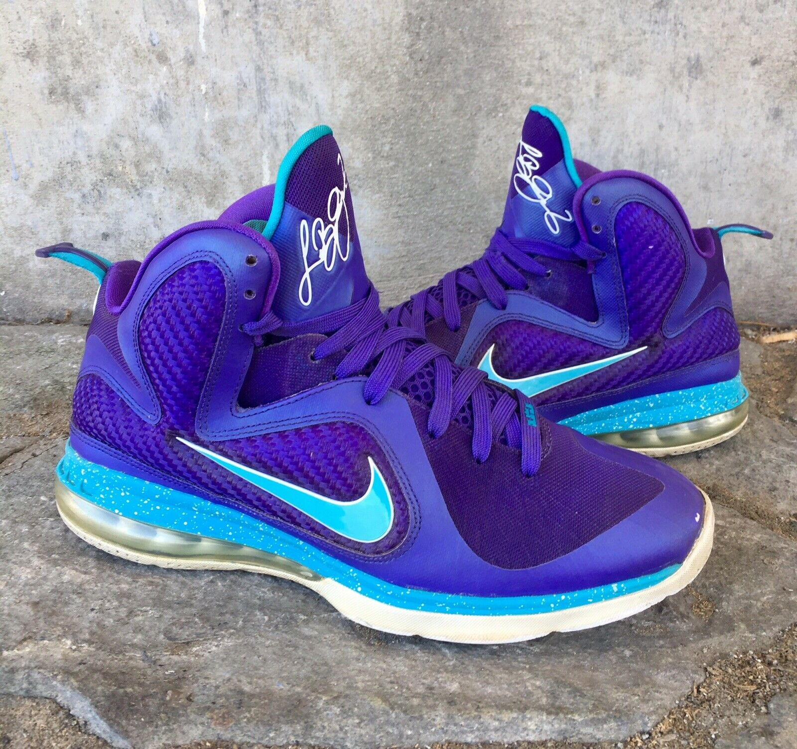 Nike Air Max Lebron 9 IX Hornets Size 10 Men's Basketball shoes Purple bluee 2012