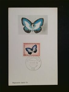 NL-NEUGUINEA-MK-1961-SCHMETTERLINGE-BUTTERFLY-MAXIMUMKARTE-MAXIMUM-CARD-MC-c7833
