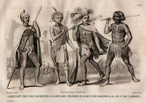 Suits-Hawaii-Celebes-Madison-Gambier-Polunesie-Engraving-Original-19th