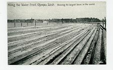 """Largest Boom in the World"" Olympia WA Water Front LOGGING Antique 1910s"