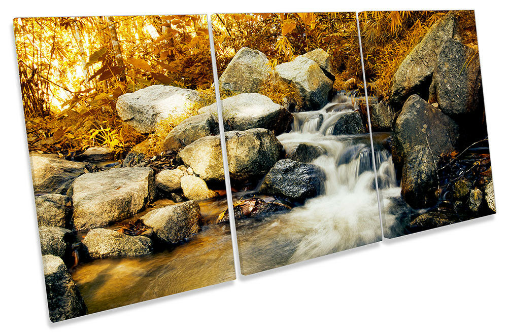 Forest Stream Orange Bild CANVAS Wand Kunst TREBLE Drucken