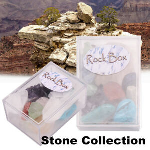 Natural-Stone-Collection-Box-Mix-Gems-Crystals-Mineral-Specimens-Rock-AL