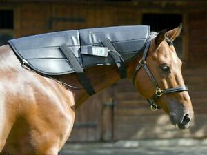 PEMF-HORSE-EQUINE-NECK-WRAP-PULSED-ELECTROMAGNETIC-FIELD-INJURY-HEALTH-TREATMENT