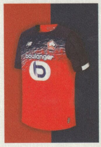 FOOT 2010 STICKERS IMAGE PANINI LILLE a choisir
