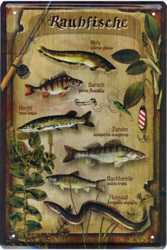 Blechschild Schilder Wandschild 20x30cm Metallschild Angeln Angler Hobby Garage