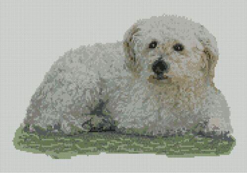 "Maltese dog puppy contato CROSS STITCH KIT 13.5 /""X 9.25/"" 34 cm x 23,5 cm d2379"