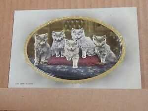 Postcard-Early-Embossed-cat-Card-034-On-The-Alert-034-Wildt-amp-Kray-2935