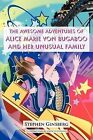 The Awesome Adventures of Alice Marie Von Bugaboo and Her Unusual Family by Stephen Ginsberg (Paperback, 2011)