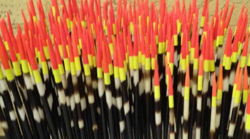 STACHELSCHWEINPOSE ORIGINAL ECHTE STACHELSCHWEINPOSE.7 bis 26cm.Handgefertigt DE