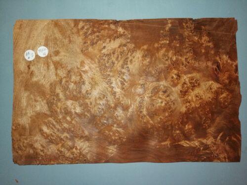 CONSECUTIVE SHEETS  OF AMBOYNA VENEER 22 X 39 cm AB#2 MARQUETRY