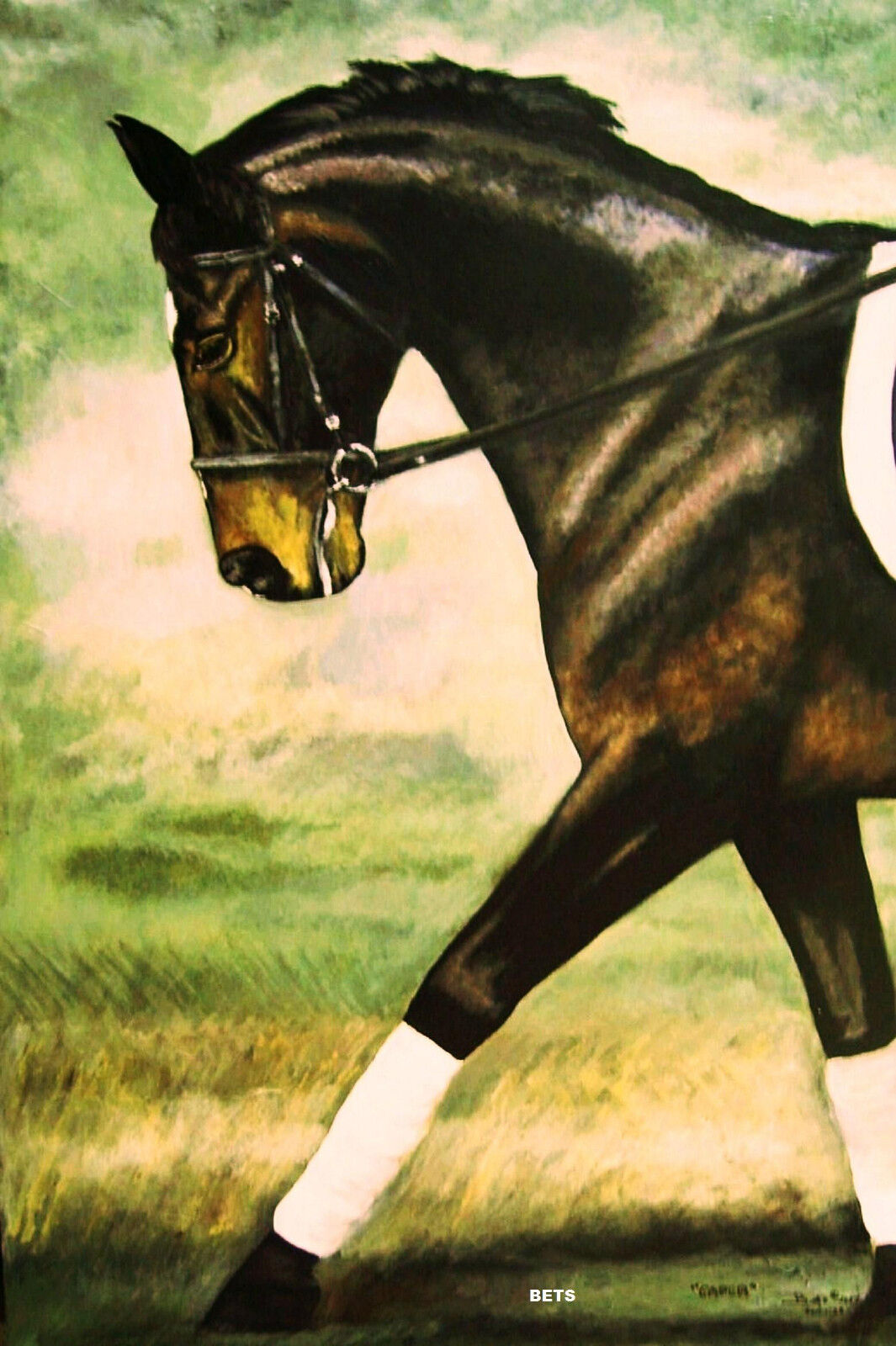 HORSE PRINT Giclee DRESSAGE Art CAPER by artist BETS  5 COLORS print size 14 X 19  famous brand